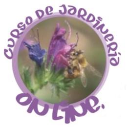 Logo curso online pag